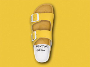 Pantone lança coleção cápsula de papetes e tênis cheios de graça e cores