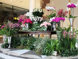 Vic Meirelles deixa o Shopping Pátio Higienópolis mais florido pelas mães