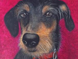 Pinturas de cães e gatos de rua são estrelas de exposição em SP