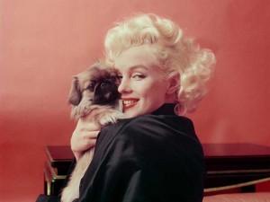 90 anos de Marilyn Monroe são lembrados com exposição de fotos inéditas