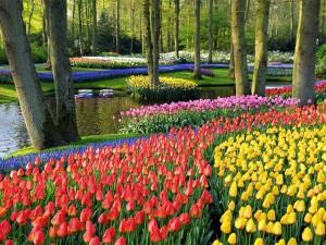Quando o homem se une à natureza: os 10 mais belos jardins do mundo