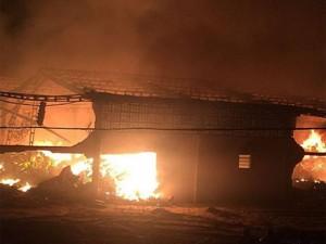 ONG Amigos do Bem sofre com incêndio no sertão de Pernambuco
