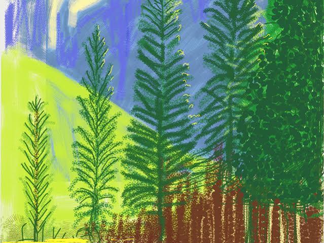 """Obra """"Untitled No. 12"""" da exposição The Yosemite Suite de David Hockney"""