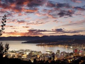 Revista J.P: sustentabilidade, cidadania e roteiros mil na Nova Zelândia
