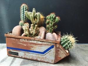 Micasa, Estúdio 20.87 e FLO assinam série de objetos de arte botânica