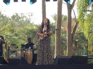 Instituto Inhotim comemora 10 anos com show de Marisa Monte e homenagem a Tunga