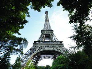 Infestação de ratos causa o fechamento de parques e jardins parisienses