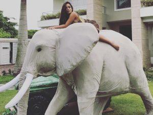 Pre-pa-ra! Com tema selvagem em décor infantil, Anitta comemorou 24 anos