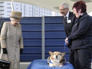 Por causa nobre, Rainha Elizabeth volta atrás e adota cão da raça Corgi