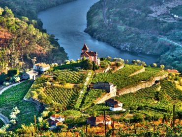 À toa em Portugal! Revista J.P fez a rota dos vinhos por lá