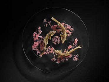 """Japan House faz imersão na culinária japonesa com a mostra """"Satoyama"""""""