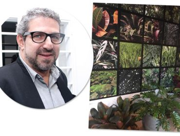 Confira obra de Pico Garcez que anda chamando a atenção em ambiente de David Bastos