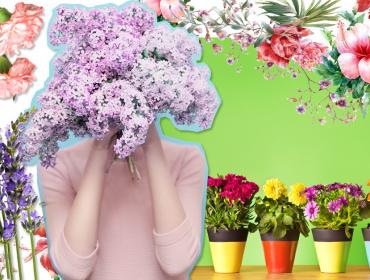 É Primavera: coloque flores… no prato! De begônia a amor-perfeito, saiba como escolher