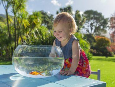 Chicco mergulha no Piquenique Glamurama com ação que ensina a cuidar do meio ambiente