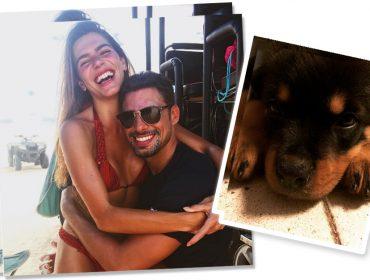 Mariana Goldfarb e Cauã Reymond: pet na área, Réveillon em casa e Emmy à vista…. Vem!