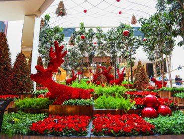 Florista das estrelas, Jeff Leatham assina o decór de Natal do Iguatemi São Paulo