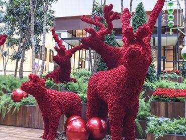 Florista das estrelas, Jeff Leatham assina o décor de Natal do JK Iguatemi e Iguatemi SP
