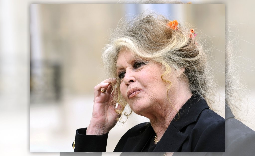 Brigitte Bardot considera escândalos de assédio 'hipócritas, ridículos e sem interesse'