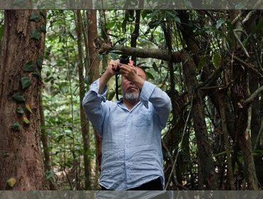Com dois ateliês no Brasil, Ai WeiWei tira molde de vaca e come fruta do conde com casca