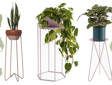 af785ba2edd Lá em Casa  sincronicidade no décor com as plantas e suportes da Selvvva