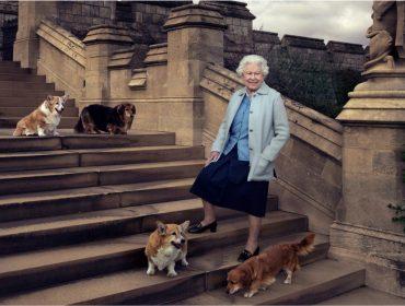 Luto no Palácio de Buckingham: morreu Willow, a pet favorita da rainha Elizabeth II