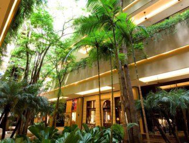 Shopping Cidade Jardim prepara atrações multiculturais para fim de semana. Agende-se!