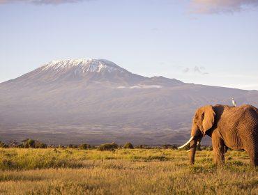 Próximo destino: 12 dos lugares mais incríveis e fotogênicos da África para visitar… e clicar já
