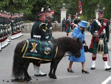 """Elizabeth II baixa na Escócia para curtir o verão e é recebida por pônei """"sem noção"""""""