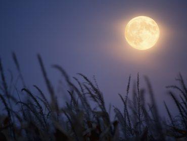 Relacionamentos e negociações estão em alta na semana da Lua Cheia