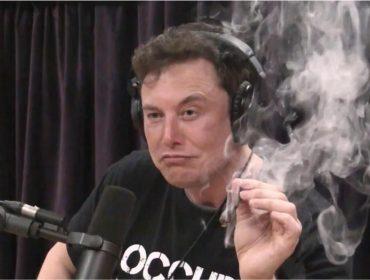 Elon Musk promete para breve produto que conecta o cérebro a um computador