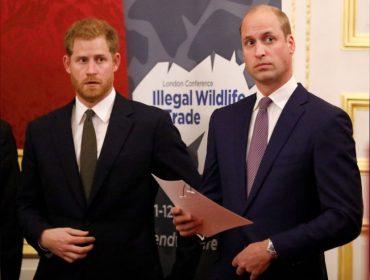 William e Harry terão seus próprios escritórios de relações públicas no Palácio de Kensington