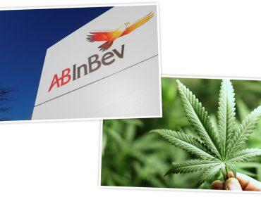 AB InBev e produtora canadense de maconha se unem para lançar bebida à base da erva