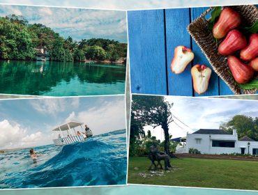Desbrave a Jamaica pelo olhar de Ian Fleming, autor da série James Bond