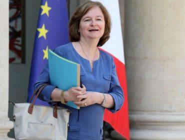 Ministra francesa diz que apelidou seu gatinho de Brexit por motivo bem peculiar. Vem saber!