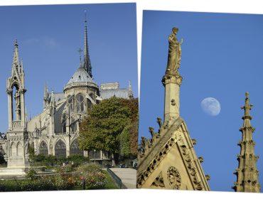 Arquitetos do mundo todo serão convocados para ajudar a reconstruir a catedral de Notre Dame