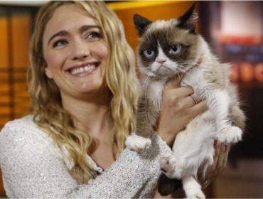 Grumpy Cat deixa fortuna de mais de R$ 400 mi para sua dona. Aos fatos