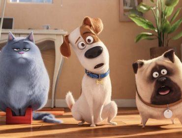Pré-estreia de 'Pets: A Vida Secreta dos Bichos 2' terá tapete vermelho para lá de especial… Vem saber
