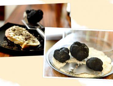 Chegou a temporada de trufas negras para a felicidade dos gourmets de plantão