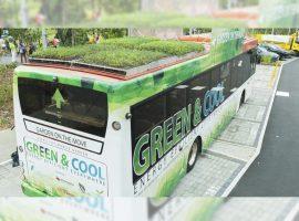 Ônibus urbanos com um jardim no teto? Que loucura é essa? Glamurama explica