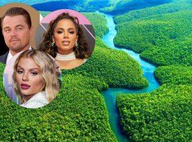 De Luísa Sonza a Leo DiCaprio: Celebridades se posicionam sobre queimadas na Amazônia