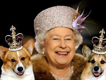 Palácio de Buckingham terá exposição dedicada aos animais de estimação da família real