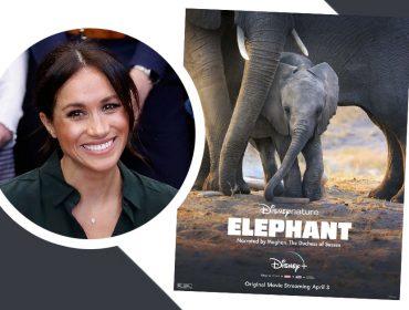 """Meghan Markle vira alvo de críticas por sua atuação como narradora de filme da Disney: """"Desempenho meloso e exagerado"""""""