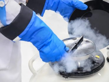 Novo coronavírus causa aumento de procura por congelamento de óvulos e sêmen em NY