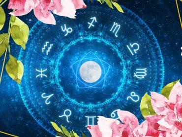 Para cada signo, um floral! Terapeuta indica as melhores essências para manter o equilíbrio de acordo com a astrologia… Confira!