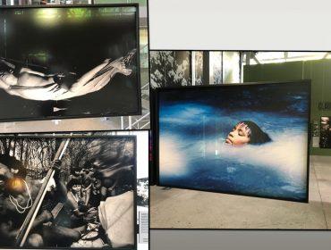 Fundação Cartier reabre suas portas e oferece um mergulho profundo no coração da floresta Amazônia