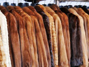 Gigante do varejo de moda americana Nordstrom não vai mais vender produtos feitos com peles de animais