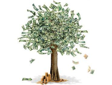 Dinheiro Verde: Que empresas estão valorizando impactos no planeta e na população. Mas há quem duvide desse movimento…