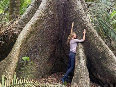 Defensora do meio ambiente, Gisele Bündchen doa R$ 100 mil para a criação da Brigada Alto Pantanal