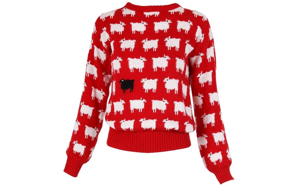 O suéter criado por Sally Muir e Joanna Osborne