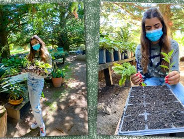Geração Z: Aprendi a fazer minha própria horta orgânica e é bem fácil. Vem ver!